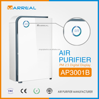 Electronic deodorizer with hepa filter type air purifier