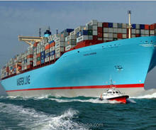 sea shipping from china to Hodeidah/international logistics/best freight forwarder