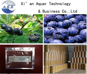 Import frozen acai puree / acai berry juice/acai powder 10:1