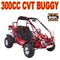 TrailMaster 300cc Cross Kart