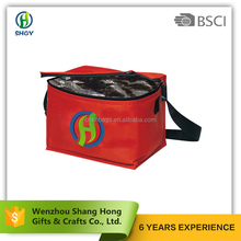 bsci insulated food delivery cooler bag