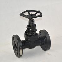 Oil pipe Transmission Cast steel Globe Valve manually