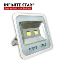 New Outdoor IP65 Waterproof 100w LED