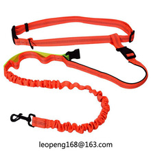 amazon FBA Pet Accessories Reflective Bungee Hands Free Dog Leash For Running