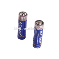 R6P Hot Sale Cheape 1.5V AA Super Heavy Duty Battery, 1.5v Dry Battery (Tcbest/OEM))