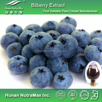 100% Natura Bilberry Extract,Bilberry Extract Powder,Bilberry Fruit Extract Anthocyanidin 15% 25%
