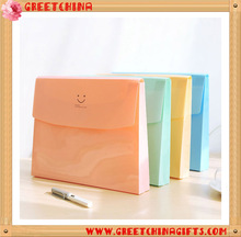 A4 Custom Candy Color PVC Translucent Folding File Folder