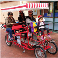Pedal-driven Two Person And Four Person Touring Sightseeing Surrey Bike For Family, Surrey Bike for sale