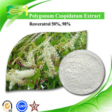 Anti-oxidant Polygonum Cuspidatum P.E. Resveratrol 50%-99%. Giant Knotweed P.E.