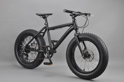 20 inch Fat bike customized beach cruiser