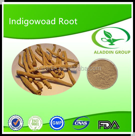 High Quality Indigowoad Root Extract P.e.10:1 Radix Isatidis