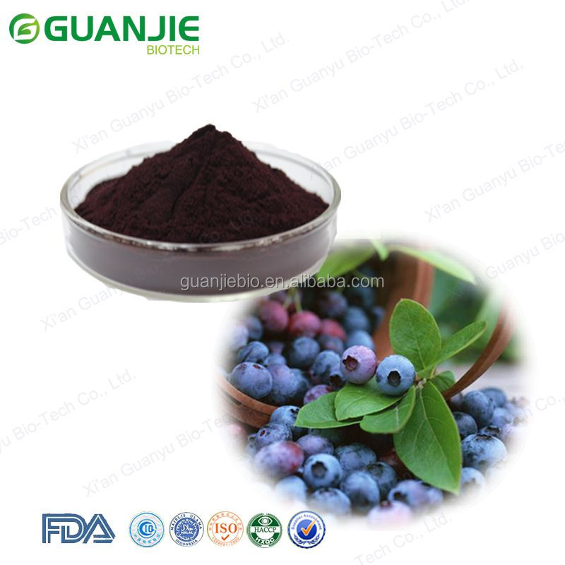 Bilberry Extract / Bilberry Plants for sale / 25% Anthocyanidins