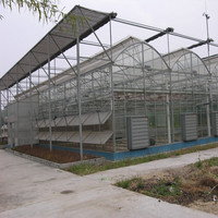 Agricultural greenhouses soilless culture growing tray