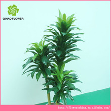 names of tree leaves,artificial christmas tree,plastic tree