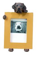 dog shaped polyresin photo frame