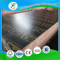 construction wood concrete formwork plywood(black film faced plywood)