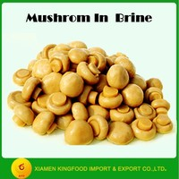 Chinese canned whole mushroom champignon in brine