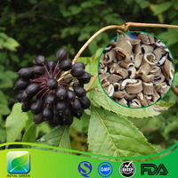Enhance sexual performance Siberian ginseng root extract 0.8% 1% 2.0%