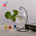Glass Terrarium with Metal Standing