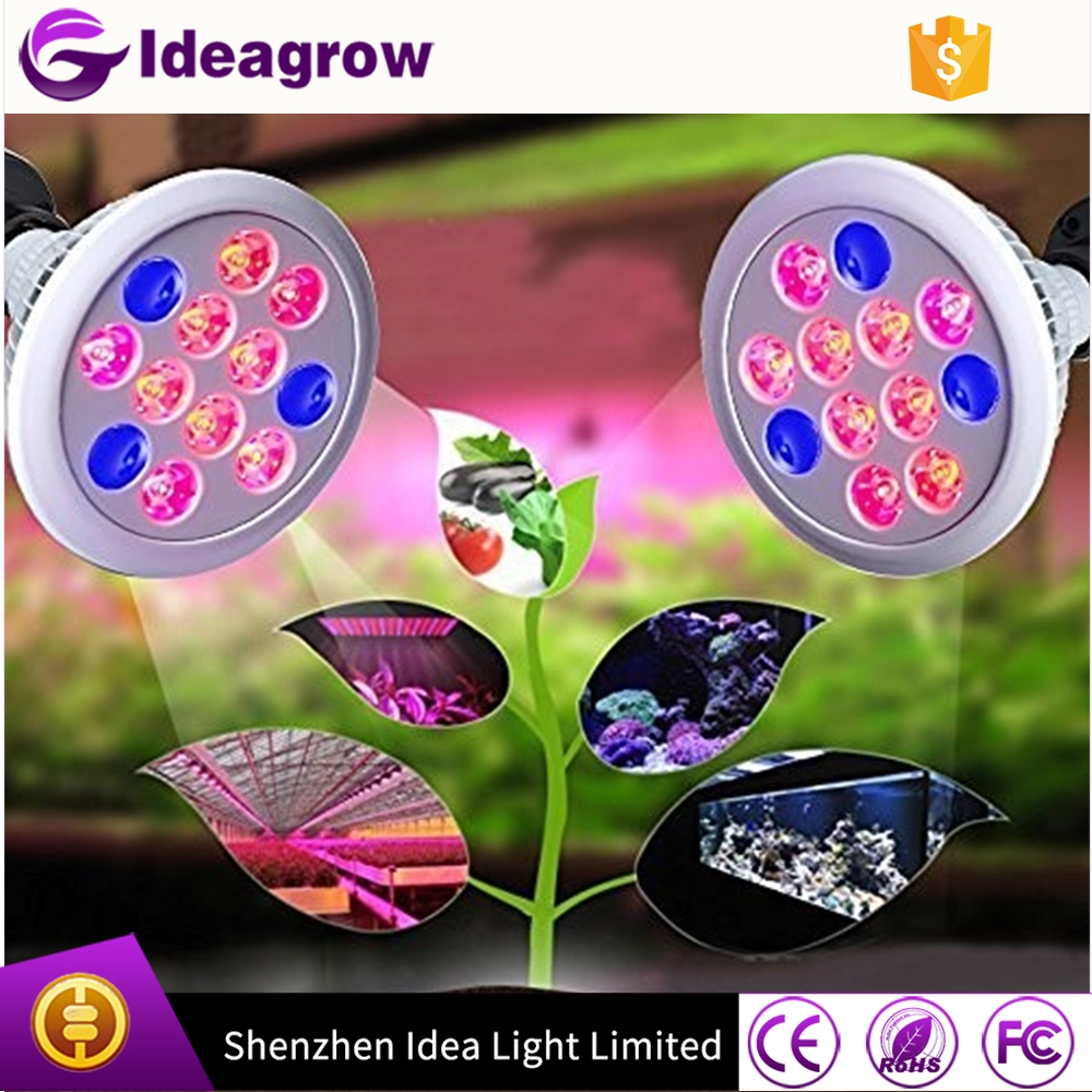 Ideagrow plant bulb 24w led grow light red blue 3 bands E27 Par38 led plant grow light