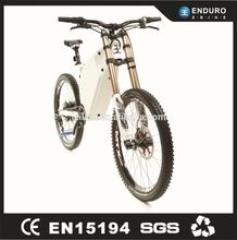 1500W Electric Giant Bike Green City Electric Bike For Sale with the TFT display