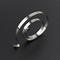 stainless flat spiral spring by china supplier