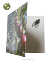 Experienced voice recording greeting card supplier with cheap price