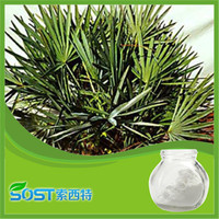 Factory supply pure powdered saw palmetto fruit extract fatty acid