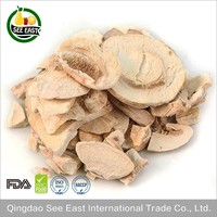 items for sale in bulk FD vegetable freeze dried mushroom