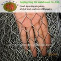alibaba hot sale home depot product Anping hexagonal wire mesh
