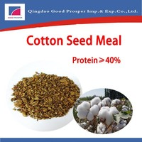 High Quality Cotton Seed Meal Price