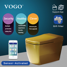 VOGO smart one piece toilet intelligent bidet electronic toilet warm seat cover S350
