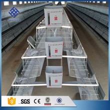 30 Years' factory supply automatic a type layer chicken cage for large