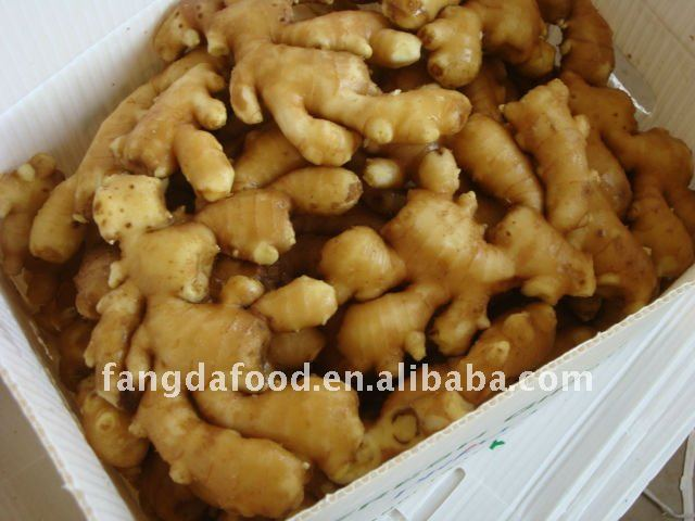 Top quality China fresh ginger and garlic