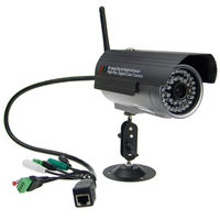 Popular 300,000 Pixels Wireless Network Surveillance IP Camera with 2 Years Warranty
