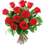 One Dozen Roses To Brazil-Brazil Flowers Shop