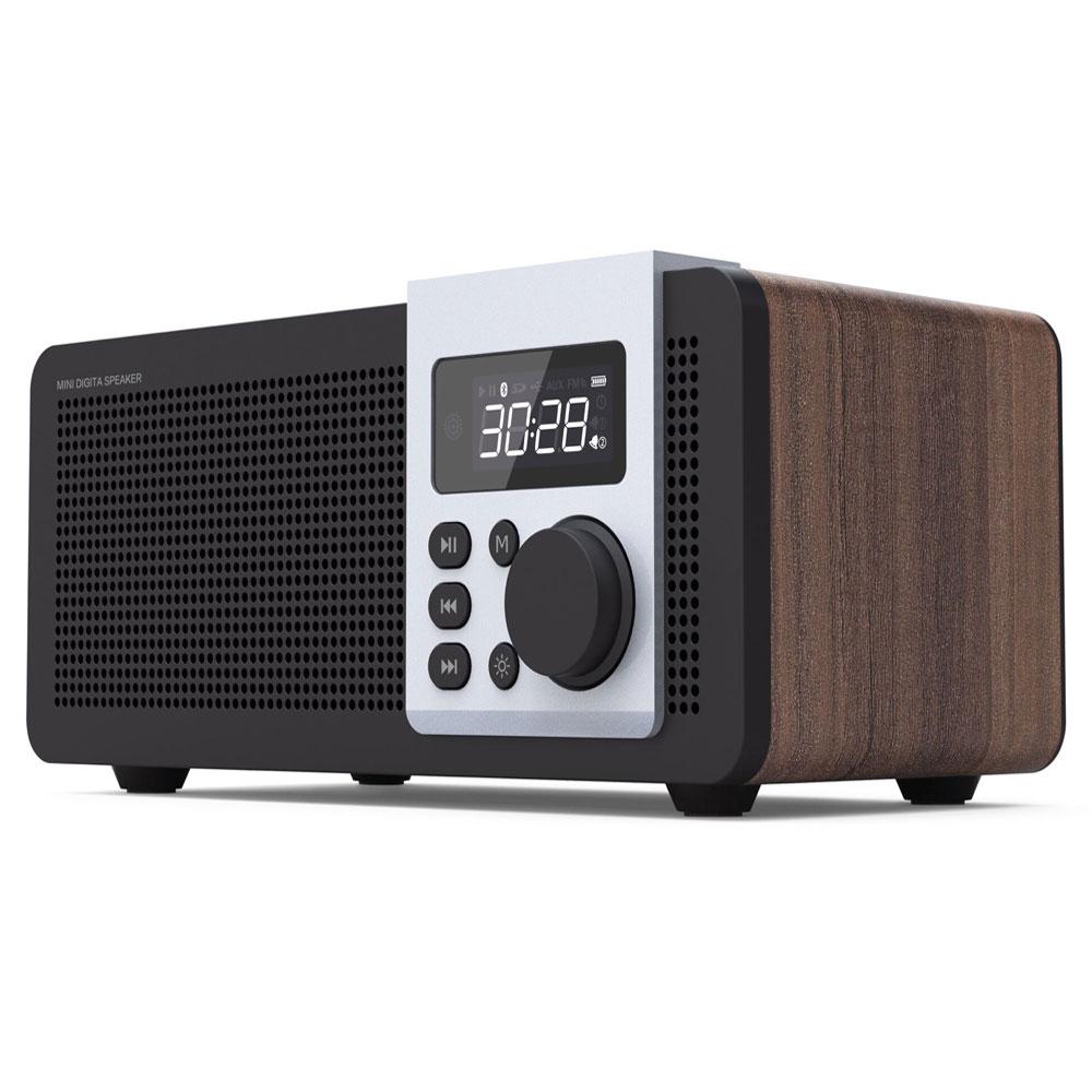 Radio FM Portable avec Haut-Parleur Bluetooth et Lecteur De Carte SD, fonction d'appel Fonctionnement Bouton mode affichage LED, Rechargeable - ANKUX Tech Co., Ltd