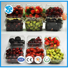 Transparent dry fruit container fruit tray