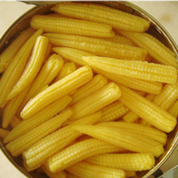 Proper price top quality canned yellow baby corn