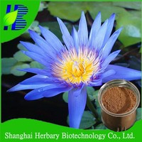 100% pure natural bule lotus extract 200:1
