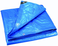 plastic hot pvctarp covers for tent/pp cheap tarp/quantity ultralight tarps for sale