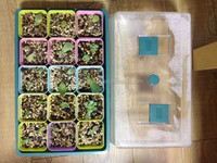 plastic seed trays/cell seed tray