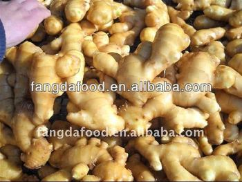 New Crop Chinese Fresh Ginger