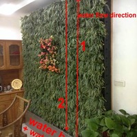 Vertical Garden Modules Hydroponics Living Plant