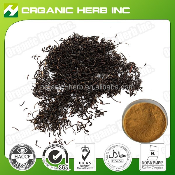 100% Natural Theaflavin 40% instant black tea extract powder | Black Tea Extract
