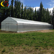 Low cost hight quality galvanized steel pipe polytunnel greenhouse