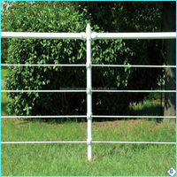 anti climb Portable galvanized pipe horse pasture fence panels for farm and pasture (2014 hot sale products)