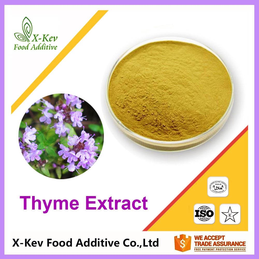 Pure Natural Thymus Mongolicus Thyme Leaves Extract 10:1