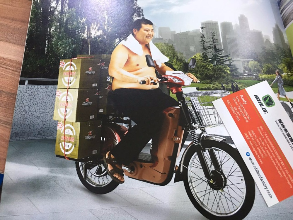2016 hot selling 450w heavy duty electric bicycle/60v cargo electric bike EN15194