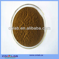 Black Tea extract 25% Polyphenols